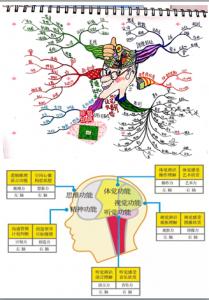 右腦圖像記憶法