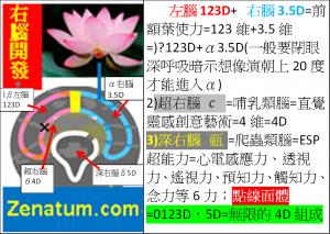 右腦開發右腦3.5D超右腦4D深右腦5D加上左腦123D=全腦開發=大腦開發