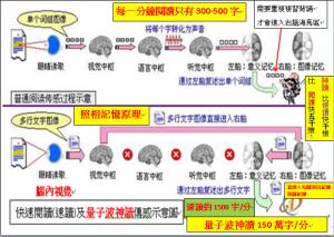 左腦眼睛視力閱讀每分鐘300字、右腦眼睛視力速讀每分鐘1500字、右腦腦內視力神讀每分鐘1500000字傳感示意圖