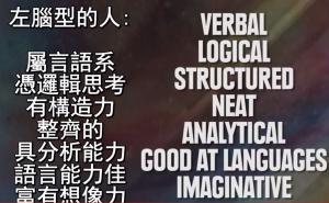語言系的左腦人