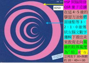 5D4D右腦高維HSP&QSR學習法取代傳統3D2D1D0D左腦教育為全腦時代