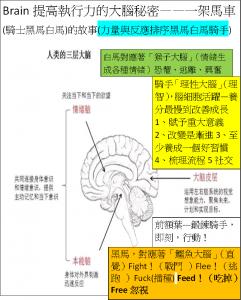 Brain一個馬車故事揭開大腦秘密