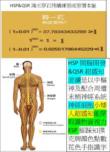 HSP&QSR小矮人神經細胞超強感知力