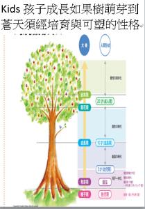 Kids孩子成長如果樹萌芽到蒼天須經培育與可塑的性格