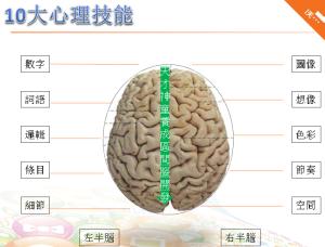 geniusbrain-HSP