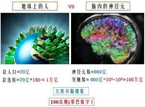 neuro神經元數目