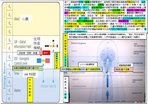 Brain12維度連接意識信息場&能量場使高速Study&Health物質世界可視化